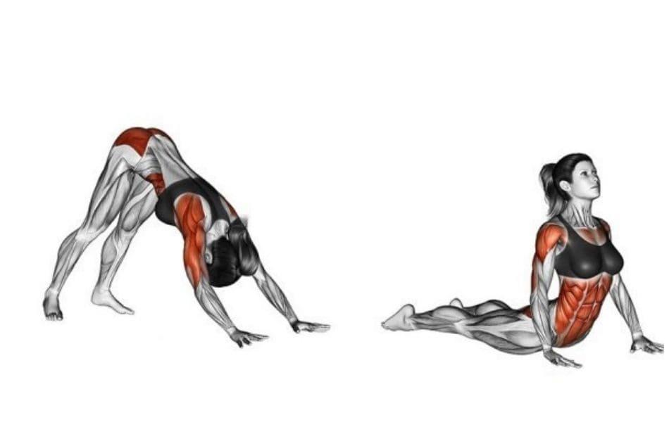 hindu-pushups